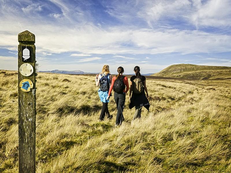 I - Walking Glyndwr's way.jpg