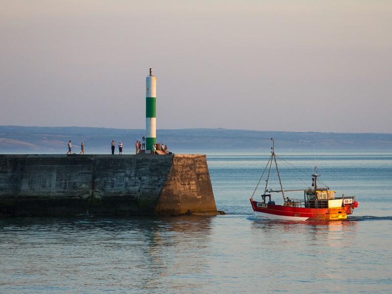 E - Cardigan Bay Seafood Festival.jpg