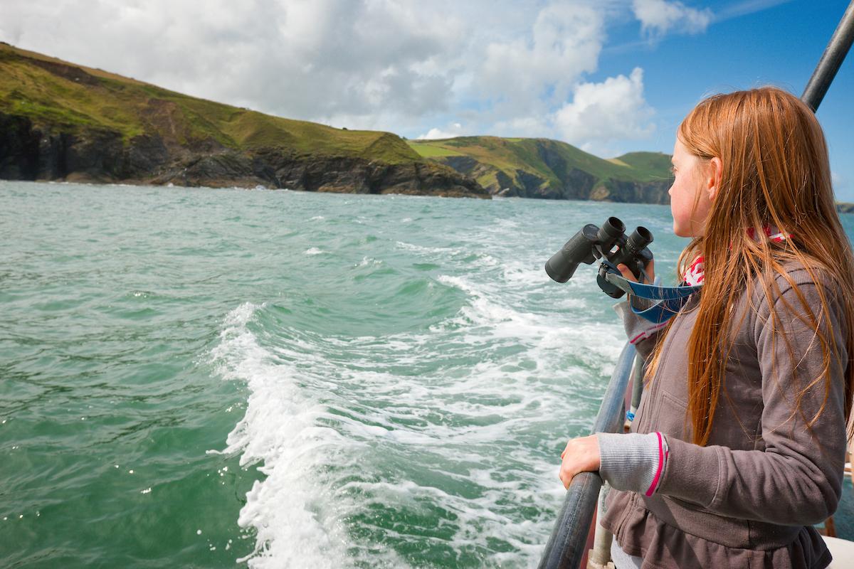 K - Dolphin Boat Trips.JPG